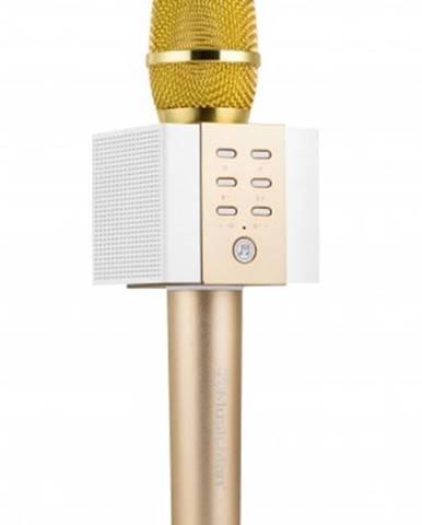 Karaoke mikrofón Technaxx ELEGANCE BT-X45